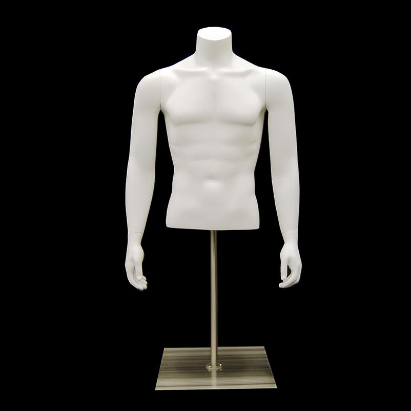 Table Top Headless Male Mannequin Torso