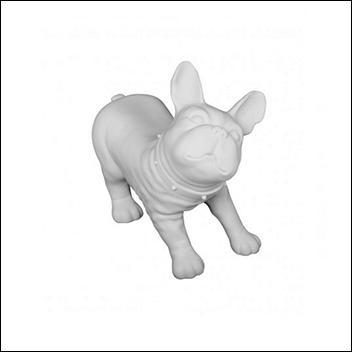Bull Dog - White