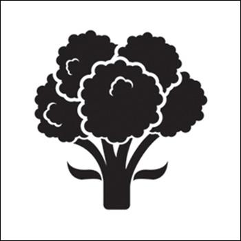 Broccoli Silhouette