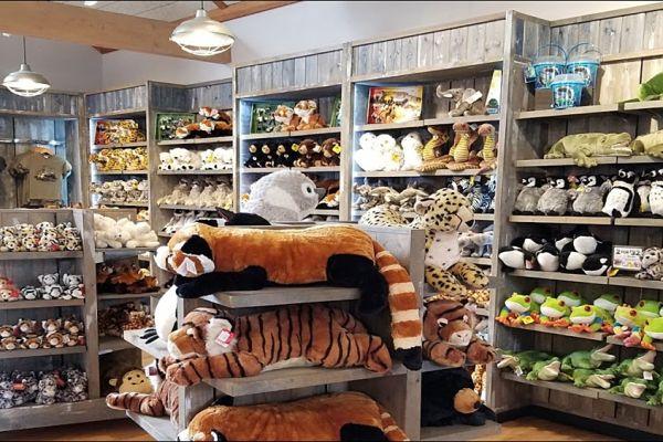 retail-armoire-gallery-057BB37F03-704B-DCAF-7ED6-076CF45C52EE.jpg