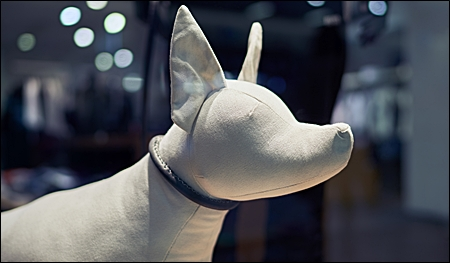 dog mannequin header pic