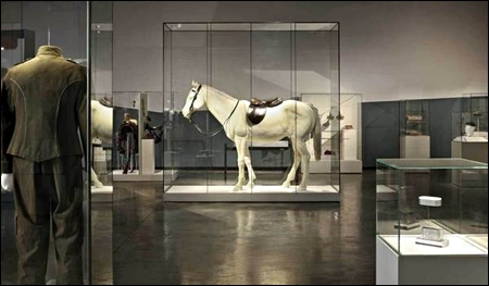 museum pedestal showcases multiple sizes LG